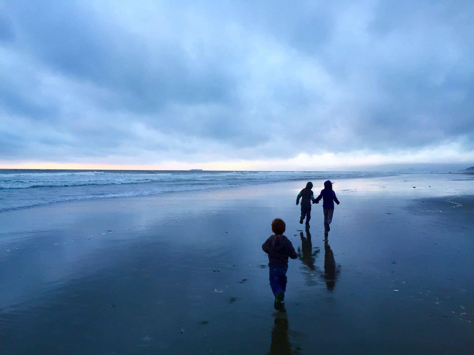 Adventures For Kids in San Francisco Sanddollar Hunting 02