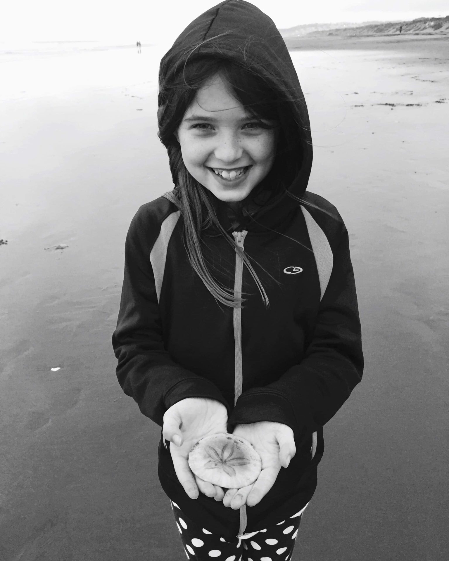 Adventures For Kids in San Francisco Sanddollar Hunting