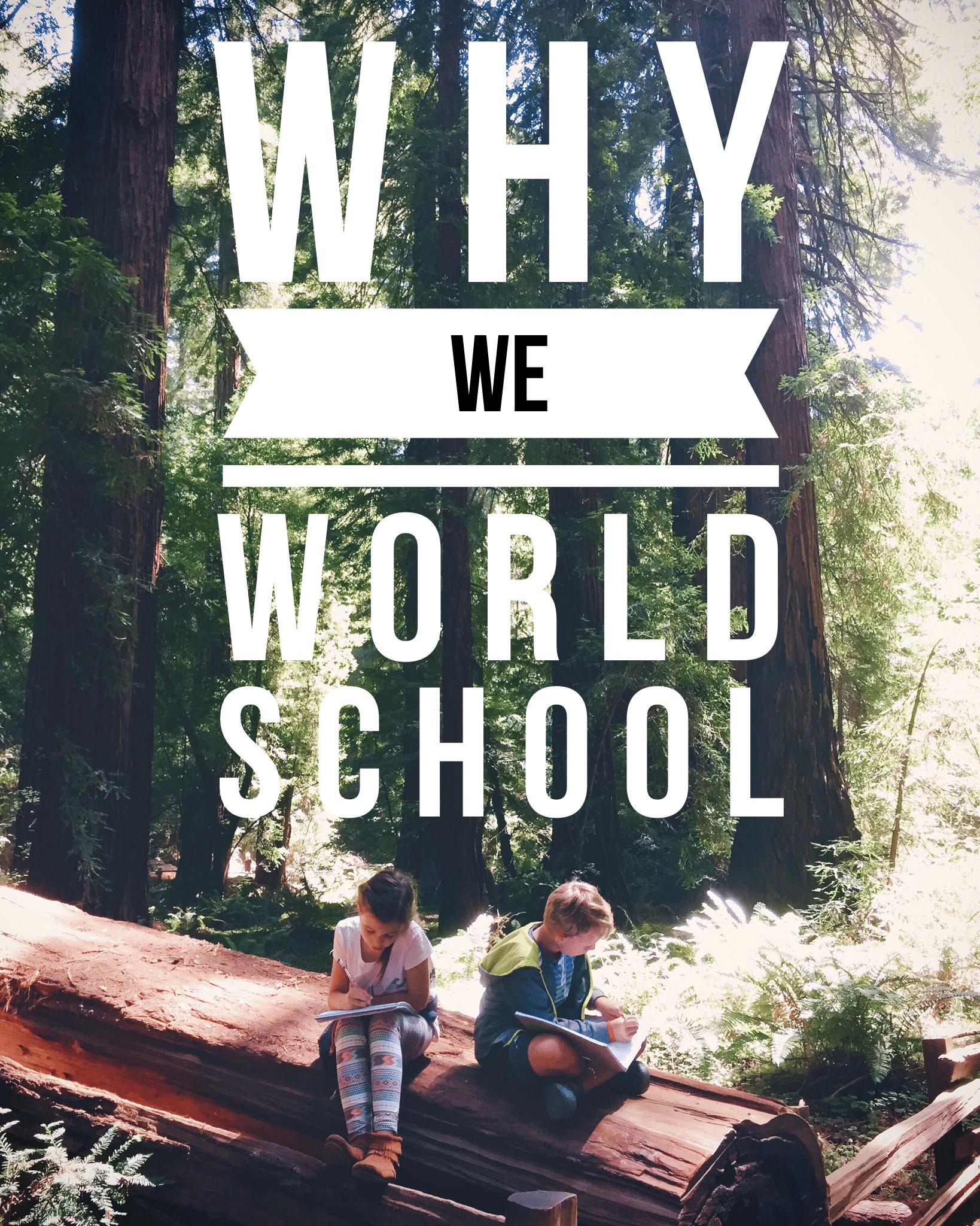 Why We World School