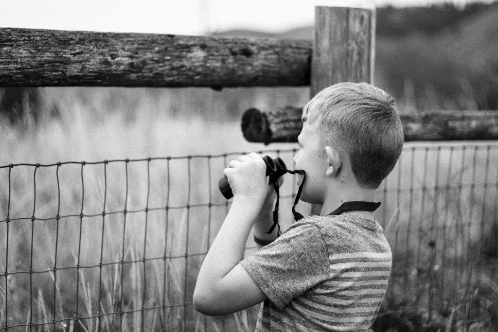 Bird Watching in Idaho