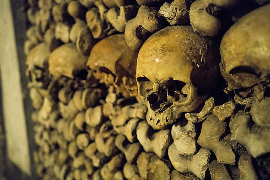 Catacombs Paris with Kids
