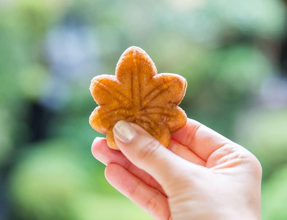 Japan Food Cookies