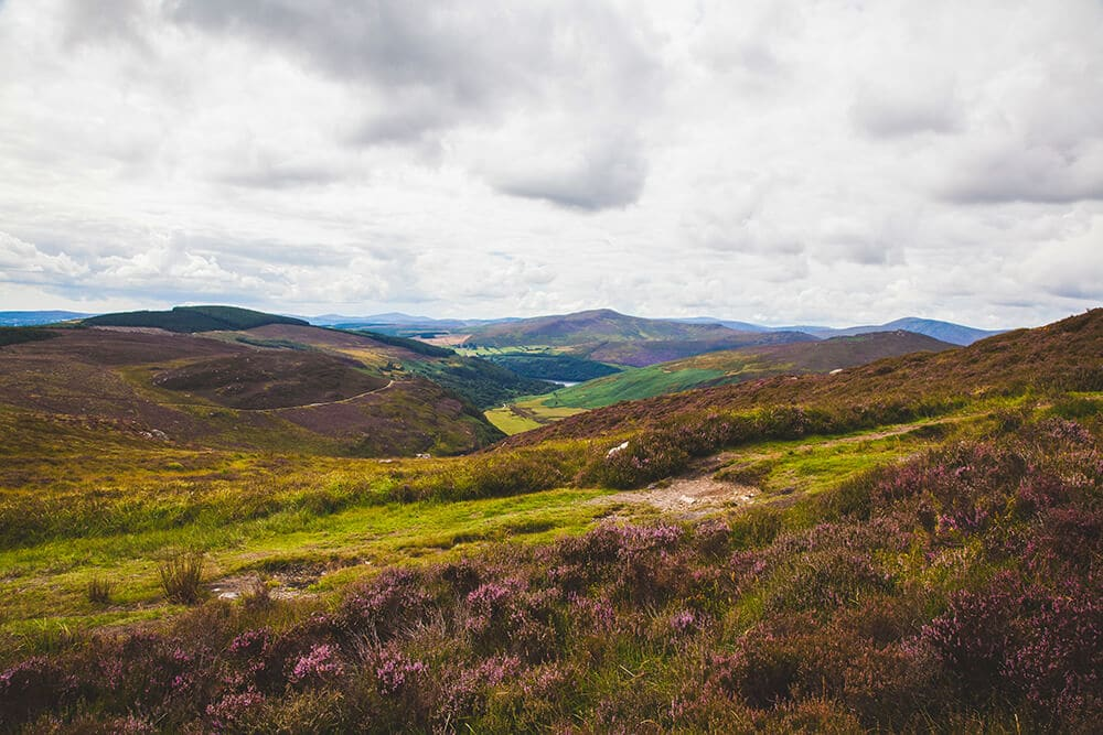 The Best Places to Visit in Ireland Wicklow Mountains