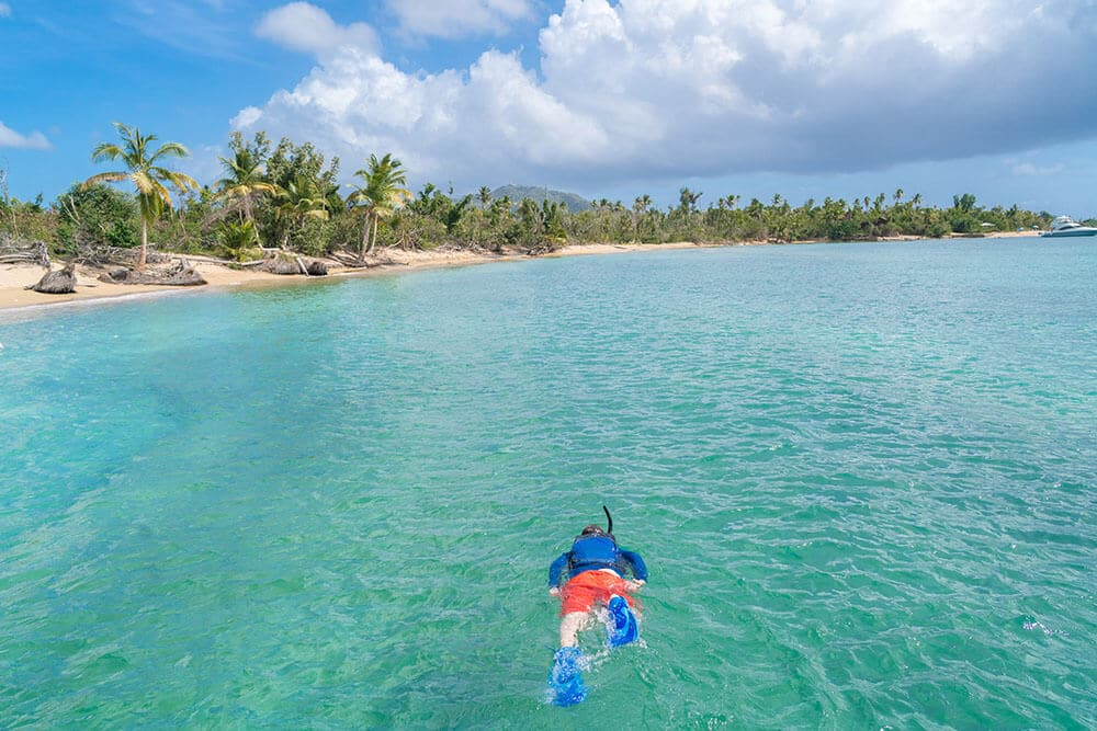 Things to do in Puerto Rico Snorkeling