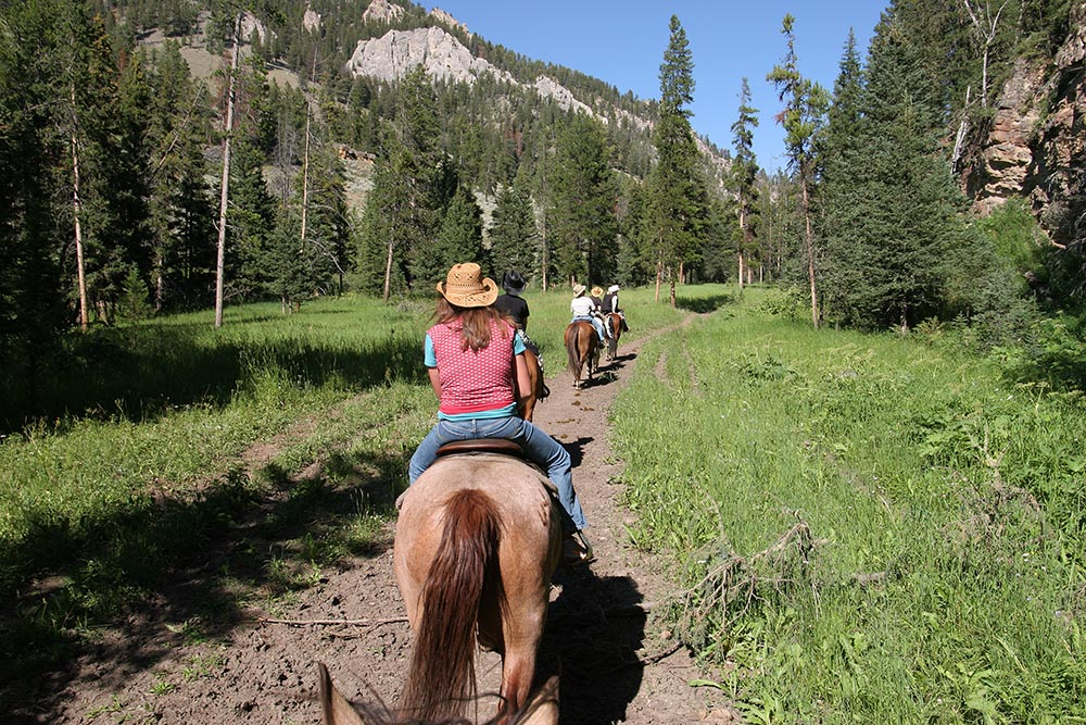 The Best Things to do in Montana