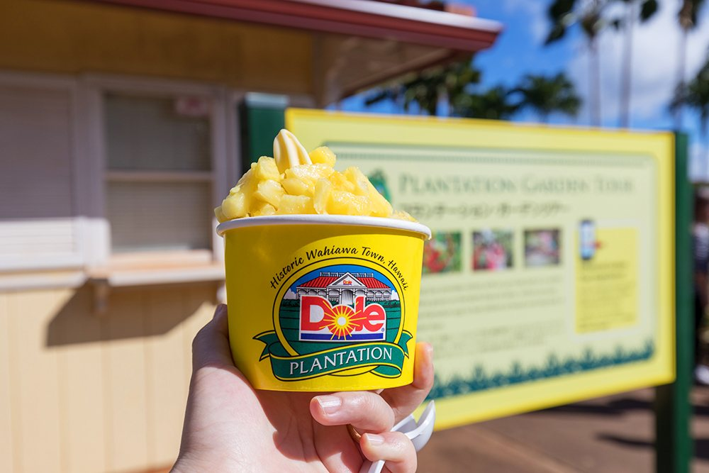 Best things to do in Oahu Dole Plantation