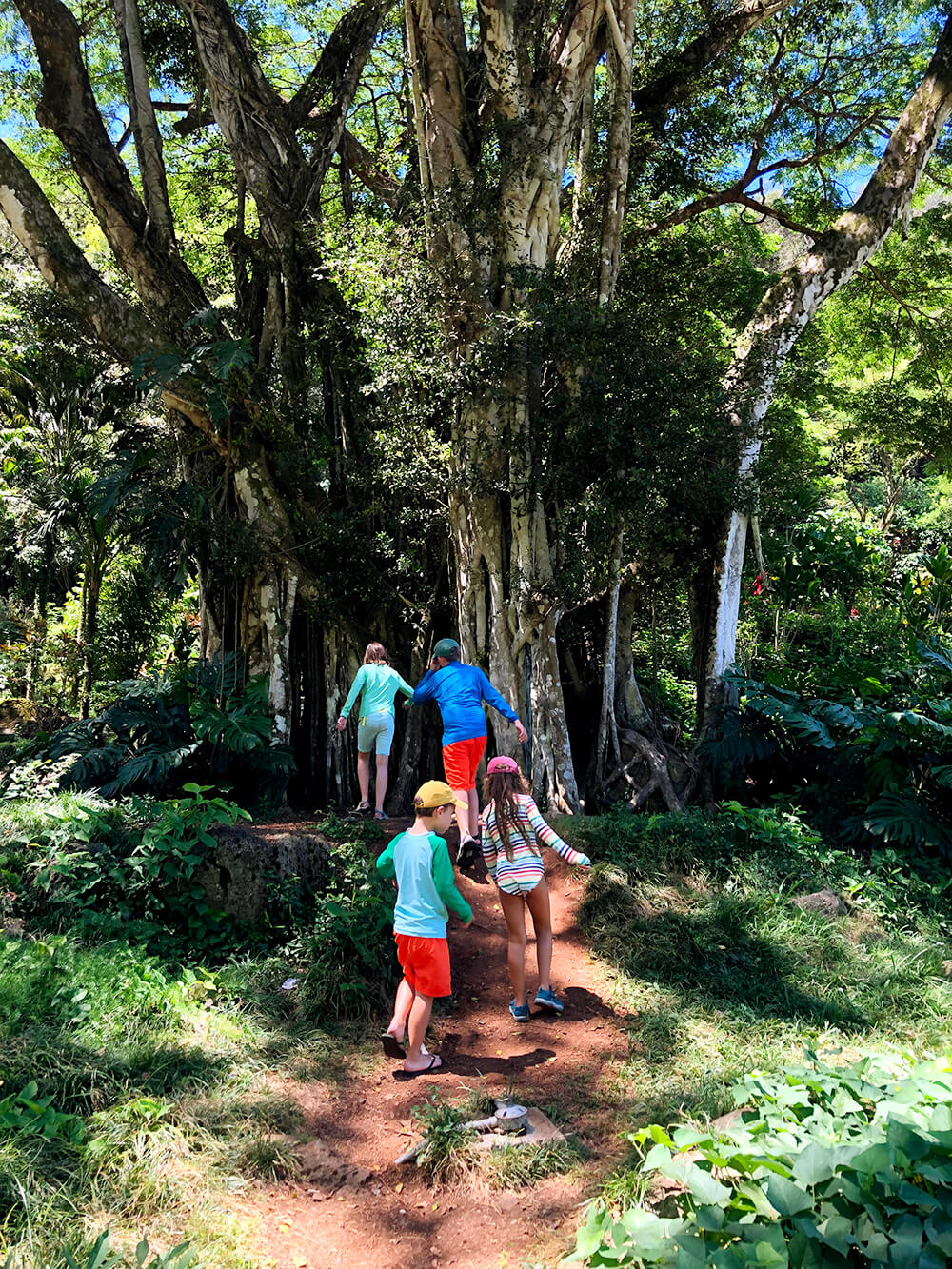 Best things to do in Oahu Hikes
